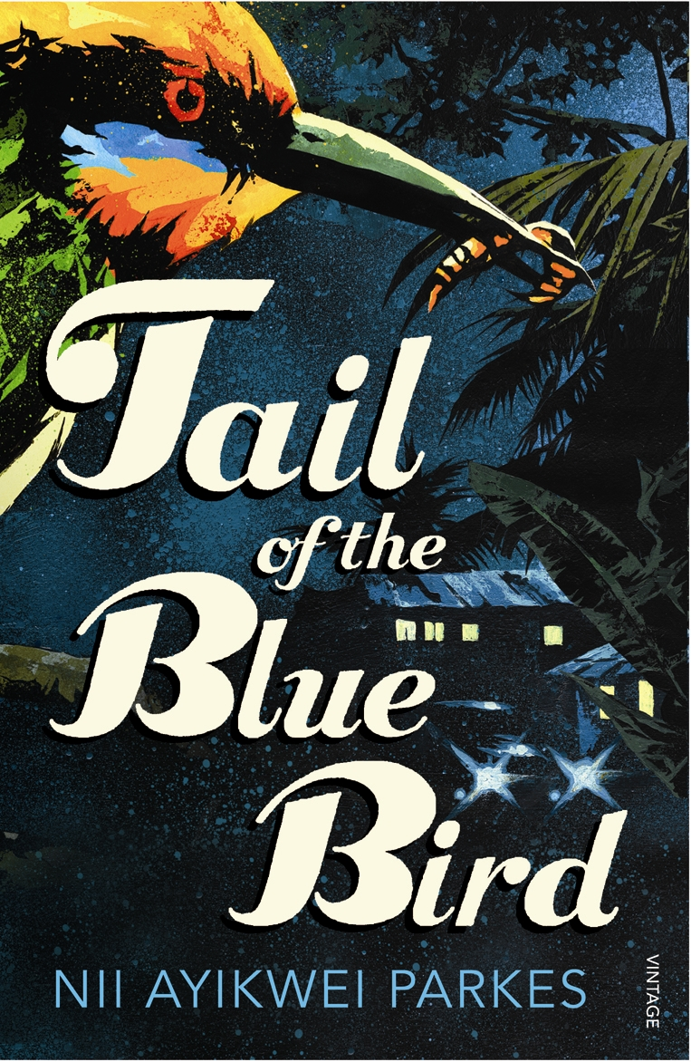 tail-of-blue-bird-jacket1